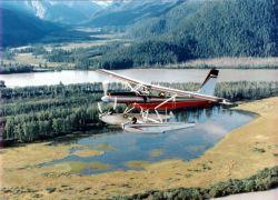 WOE154 Waterfowl Survey Airplane Photo