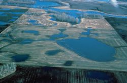 Prairie Pothole Wetland Photo