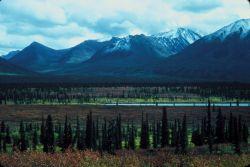 Central Alaska Photo