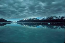 Glacier Bay Morning Photo