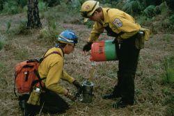 Prescribed Burn Crew Filling Torches Photo