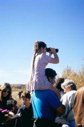 Wildlife Observation Photo