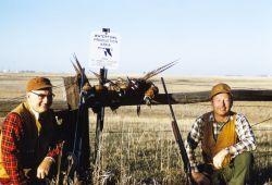 Hunting Pheasant Photo