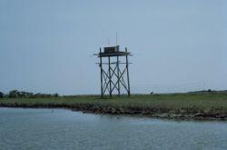 WO5088 Hack Tower, Martin National Wildlife Refuge Photo