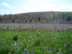 WOE238 New Jersey Land Incentive Program Photo