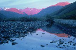 WO5170 Kongakut Valley, Alaska Photo