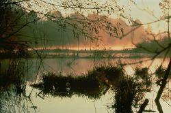 WO4347 Wetland Photo