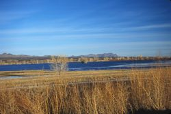 Bosque Del Apache National Wildlife Refuge Photo