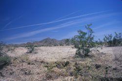 Mojave Desert Photo
