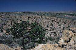 Eastern Utah Photo