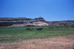 Eastern Utah Ranch Photo