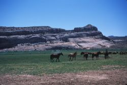 Eastern Utah Ranch Photo