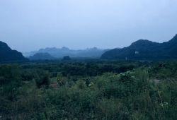Khao Sok National Park Photo
