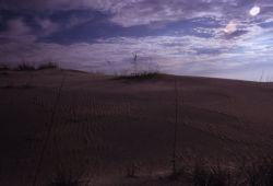 Sand Dune Formation Photo