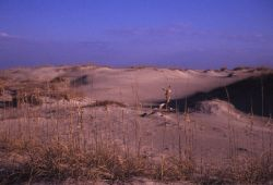Sand Dune Formations Photo