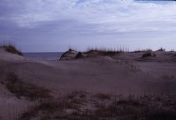 Sand Dunes and Coast Photo