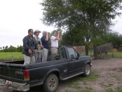 Bird watching in the Pantanal Photo
