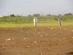 Bird Watching in Asuncion Wetland Amongst Trash Photo
