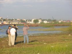 Bird Watching in Asuncion Bay Photo