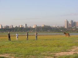 Bird Watchers with Mule Photo