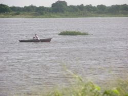 Rowboat and Water Hyacynth on Paraguay River Photo