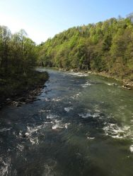 The Casselman River in western Maryland. Photo