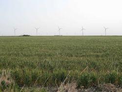 The Central Plains Wind Farm near Leoti, a 99MW operation Photo