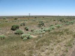 The high plains of eastern Colorado Photo
