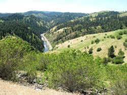 Looking down the to the Clearwater River from halfway up Harpster Grade east of Grangeville. Photo