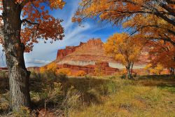Fall view of