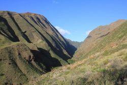 Dry desert-like canyon on lee side of Maui. Photo