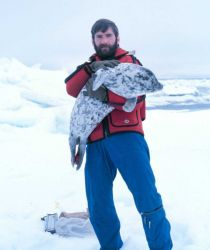 Budd Christman and a new friend - spotted seal - Phoca largha. Photo