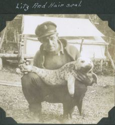 A crewman from a C&GS ship in Alaska with a harbor seal pup (Phoca vitulina) . Photo