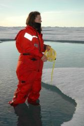 Scientist in floe melt pool making observations Photo