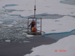 Transporting ice buoy to ice surface. Photo