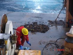 Results of sediment and rock dredging operations on HEALY. Photo