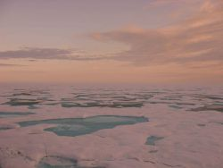 Melt pools and late summer ice absorb the soft hues of a low Arctic sun. Photo