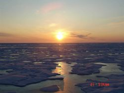 An amber sun reflecting off ice floes and melt pools. Photo