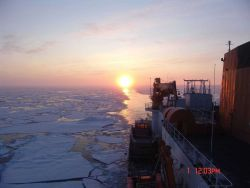 CGC HEALY passing through an area of first year ice floes with the sun directly astern. Photo