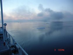 Reflections on grease ice with a few small floes. Photo