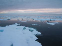 Small ice floes and open water Photo