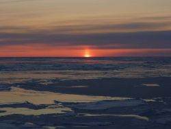 A sun pillar as sun dips below the horizon with ice floes and new ice. Photo