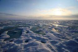 Hummocky ice and melt pools Photo
