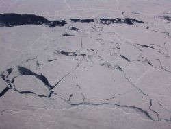 Cracking fracturing ice as a lead opens up. Photo