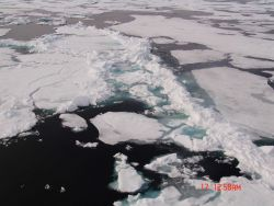 Ice floes with remains of ridge Photo