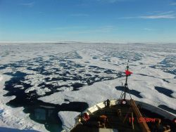 The random geometry of Arctic ice with interlocking newer thinner ice which melts quicker, older thicker ice with elliptical melt ponds, and leads see Photo