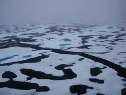 A fracture extending through an area of 2nd to multi-year ice with elliptical melt ponds. Photo