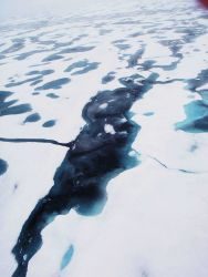 A large melt pond in 2nd to multi-year ice. Photo