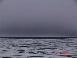 Ice floes, melt ponds, and a polynya seen below a gray sky. Photo