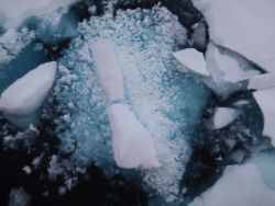 Honeycombed remnants of a melting ice floe. Photo